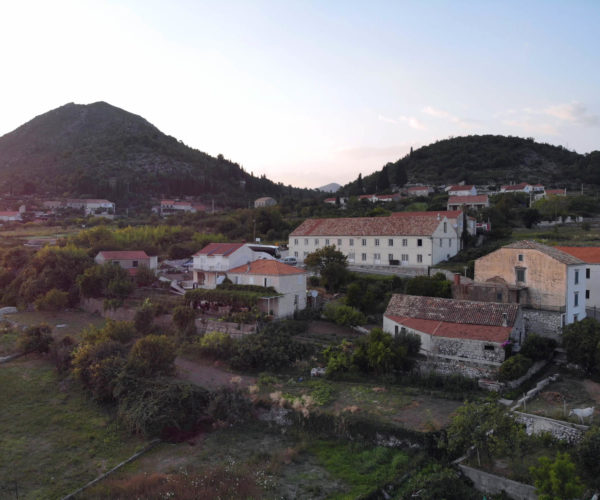 Orašac and olive growing tradition