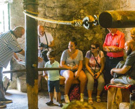Grupa u mlinici
